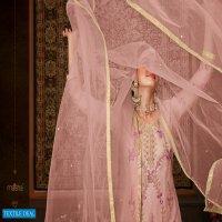 Maisha Zara Wholesale Function Special Salwar Suits